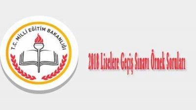 2018 Liselere Geçiş Sınavı Örnek Soruları